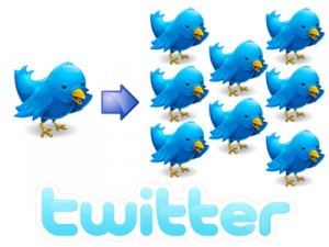 aumentare follower twitter