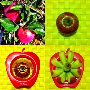 Le mele della Val di Non tagliate con il tagliamela di Pomaria